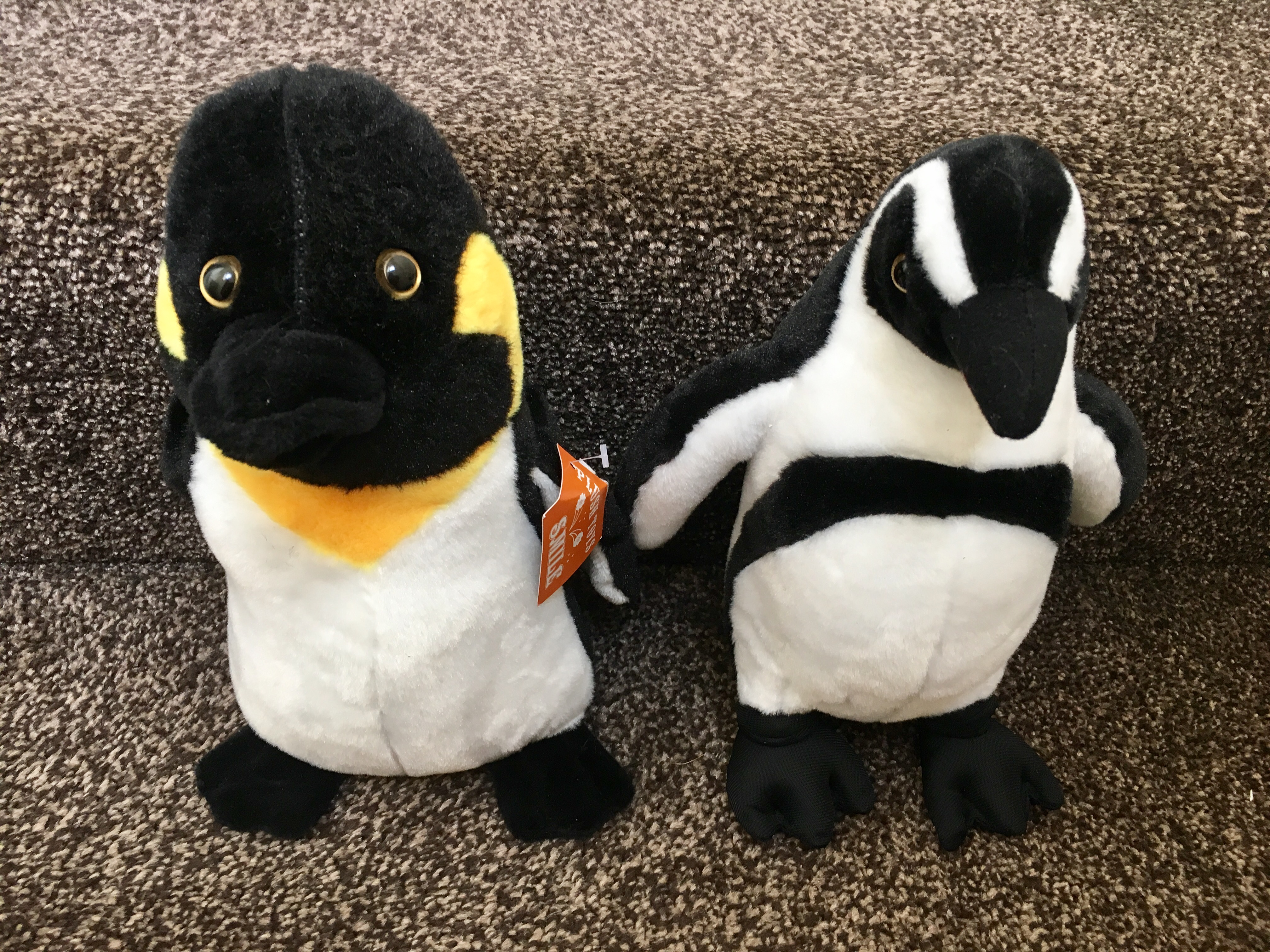 Cuddly plush penguins, sitting on my stairs
